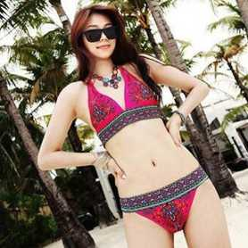 Swimsuit Bathing Suit Swimwear WLSW-003